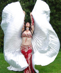 Caitlyk bellydancer with Isis Wings - to book contact www.circusperformers.co.uk